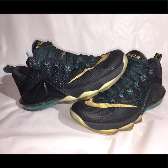 Nike Shoes | Nike Lebron Xii Low Carbon